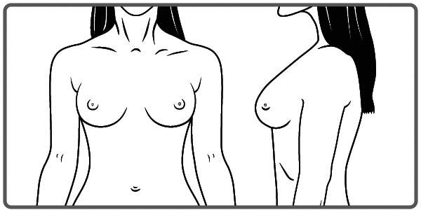 Breast
